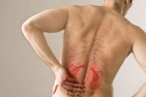 huyệt thận du có tác dụng bổ thận, chữa đau lưng