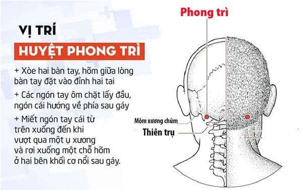 Cần biết rõ vị trí của huyệt Phong Trì
