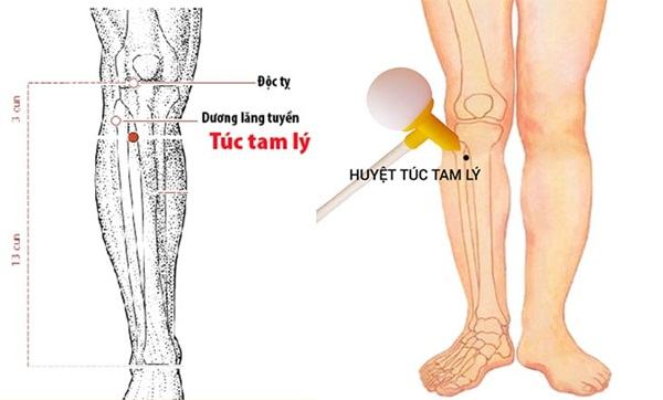 Huyệt Túc Tam Lý là một loại huyệt đạo nằm ở chân